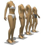 Segmented shop mannequins. The limbs and torso are...