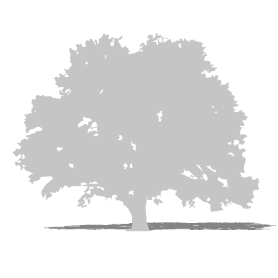 Tree Silhouette 03 3d Model Formfonts 3d Models Amp Textures