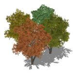 View Larger Image of FF_Model_ID12786_trees.jpg