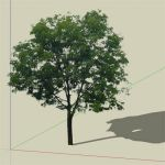 A 2d tree textured tree that casts correct shadow