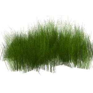 Grasses 3D Model - FormFonts 3D Models & Textures