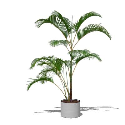 HQ Plant 02 3D Model - FormFonts 3D Models & Textures