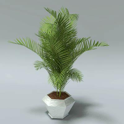 Potted Plants Revit