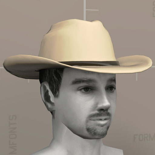 Cowboy Hat 3d Model Formfonts 3d Models Amp Textures