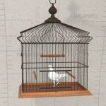 View Larger Image of FF_Model_ID16536_Gen_Bird_Cage_01.jpg