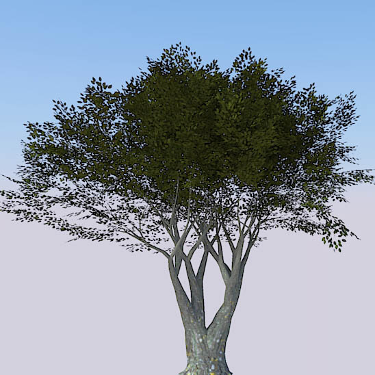 Higher poly generic tree, for when nothing else wi....