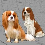 Billboard versions of Cavalier King Charles Spanie...
