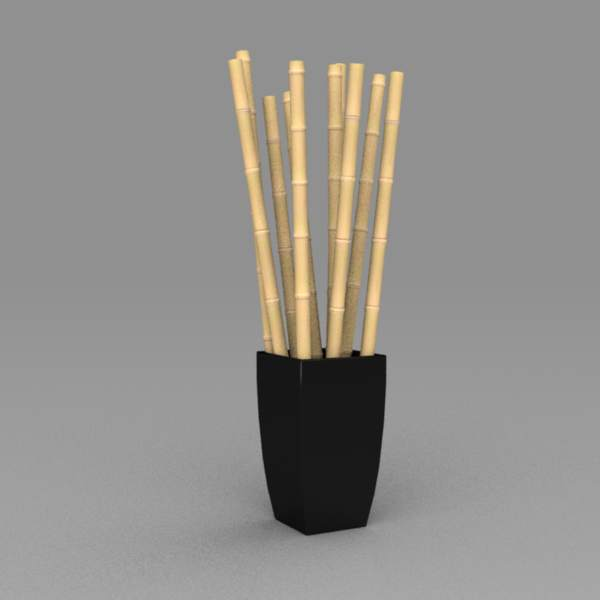 Large bamboo display for public 