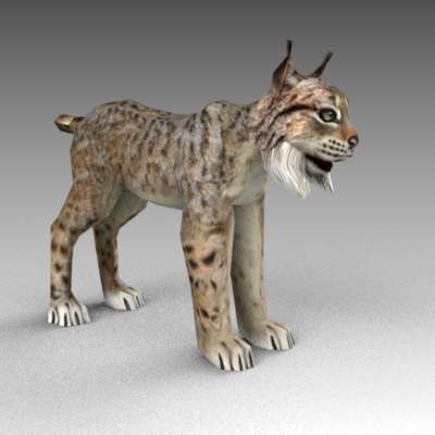 Bobcat Lynx 3d Model Formfonts 3d Models Amp Textures