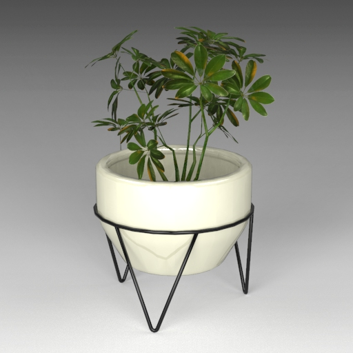 Crim Ceramic Pot Planter (note: plant 