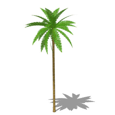 Low Poly Palm Tree 3D Model - FormFonts 3D Models & Textures