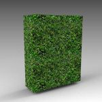 A 6ft / 2m high hedge module with slightly uneven ...