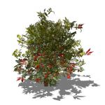 Very Low poly generic shrub. Approx. 4ft / 1.2m hi...