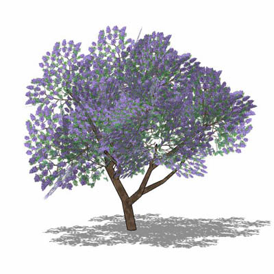 How to add trees in sketchup