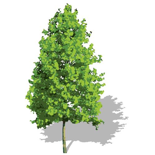 Stylized 2d Tree 02 3D Model - FormFonts 3D Models & Textures
